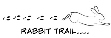 rabbit trail...